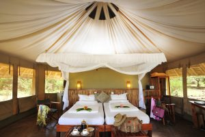 Photo Safaris - Exposure Tours - Accommodations
