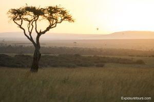 sunrise safari-2