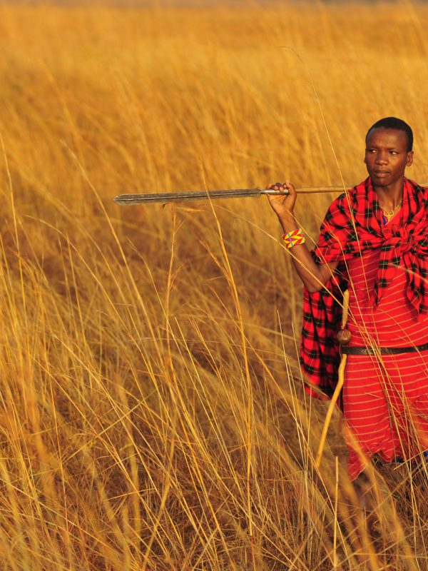 Masai Tribesman Portrait