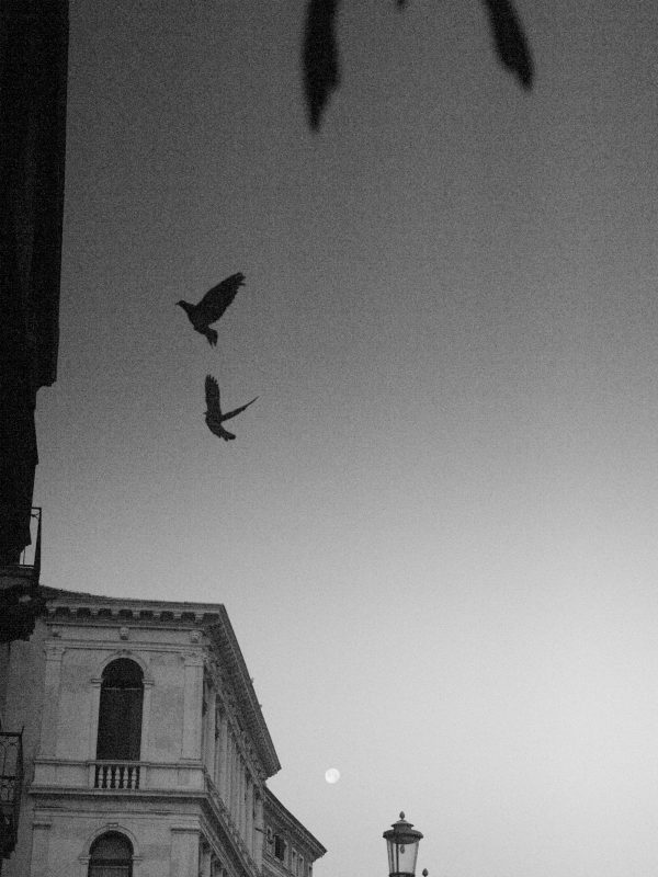 Black and White image of Venice