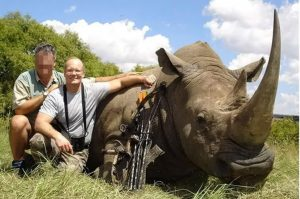 Walter Palmer Rhino kill. Image: REX